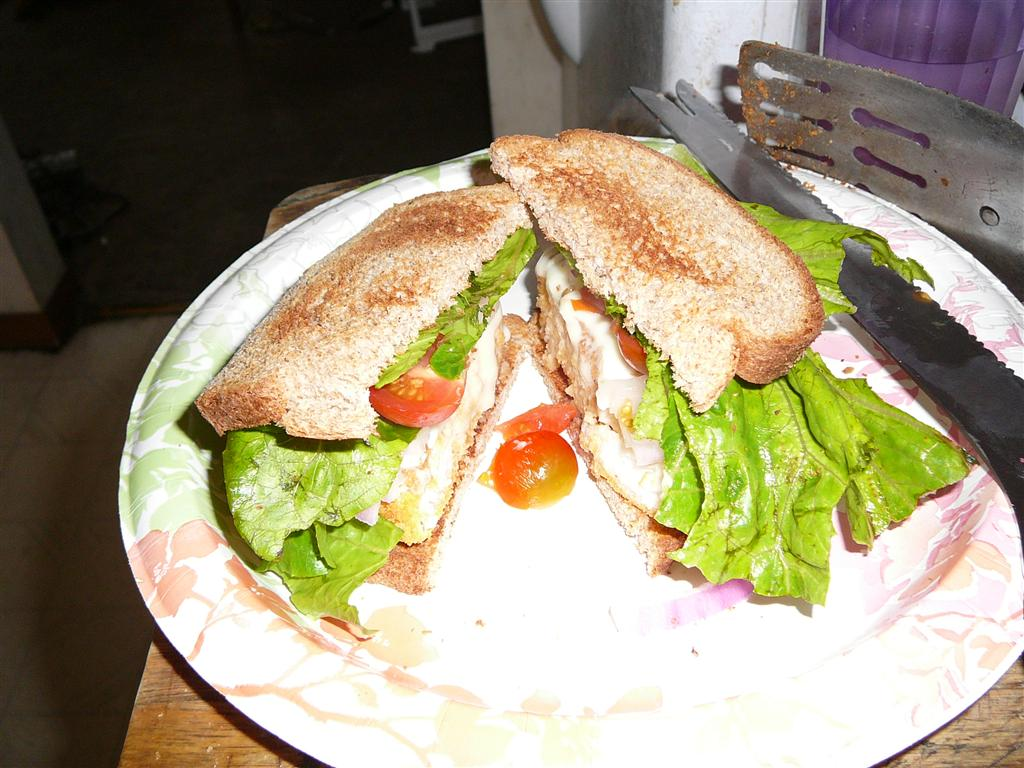 Fish sandwich fish recipe for Fish sandwich recipe